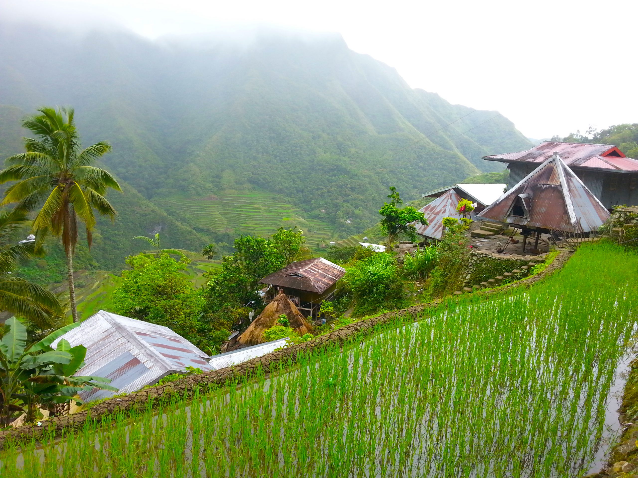 Voyages Yulgo Philippines Banaue Ricefields