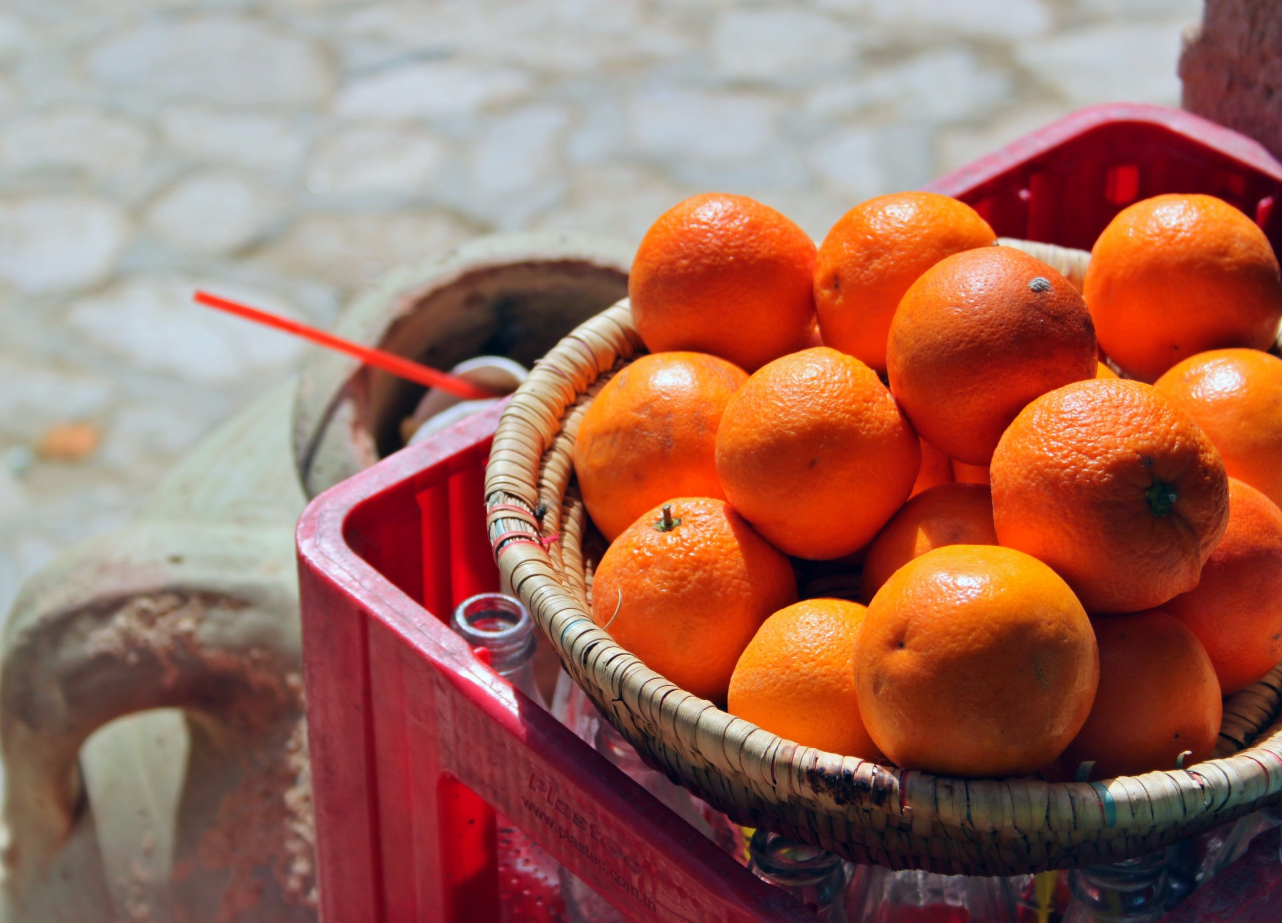 Voyages Yulgo Tunisie oranges