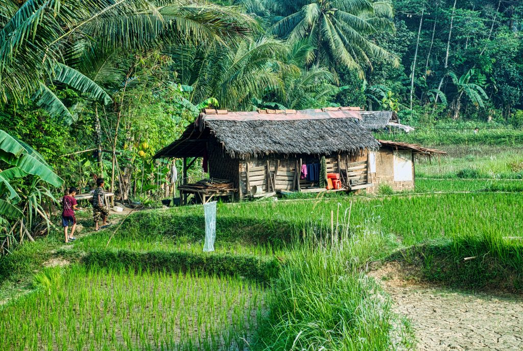 Voyages Yulgo Philippines Banaue Ricefields