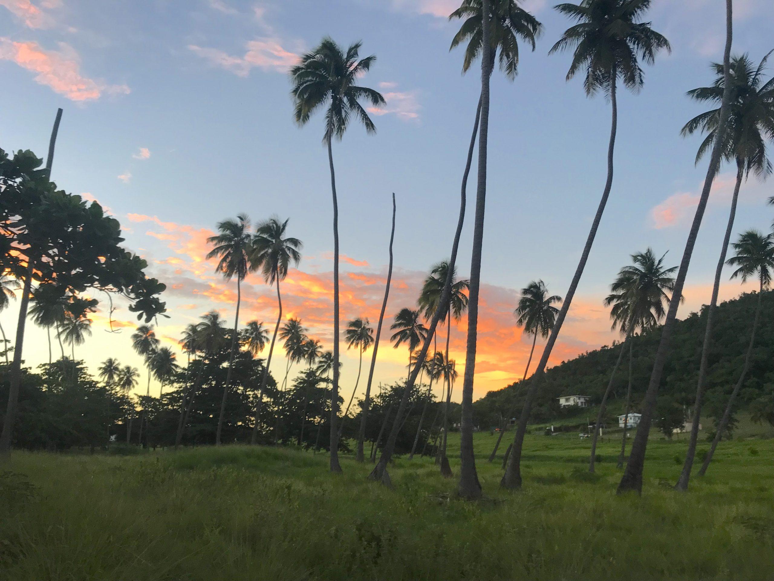 Voyages Yulgo Porto Rico Rincon