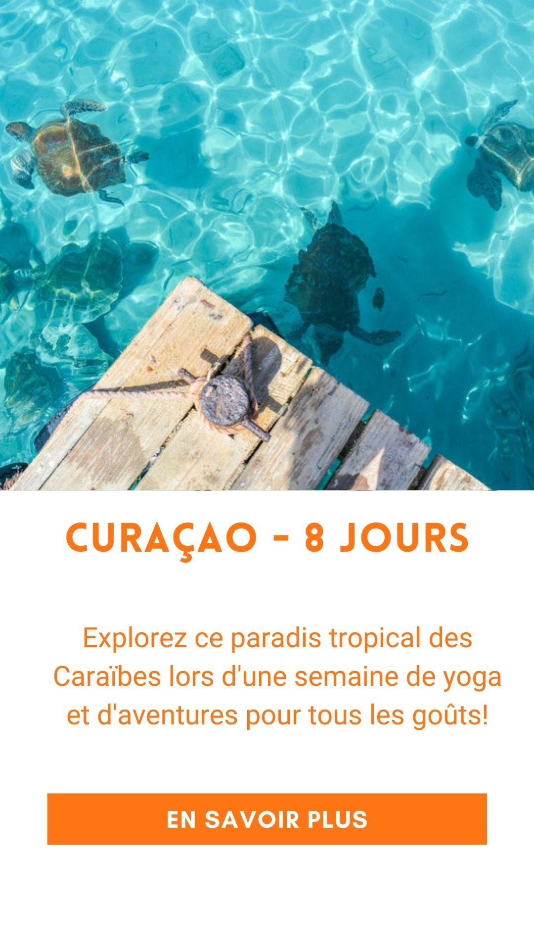 Voyage organisé à Curaçao (retraite de yoga)