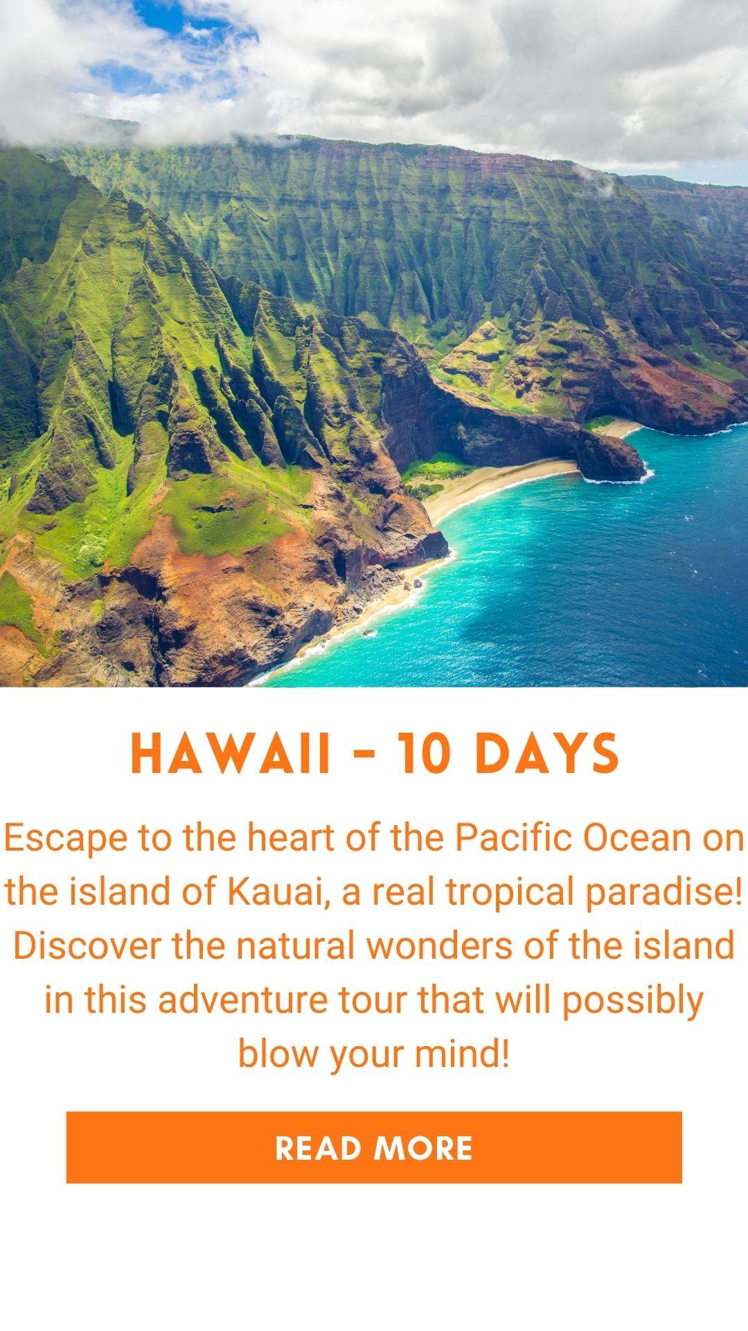 Organized trip in Hawaii