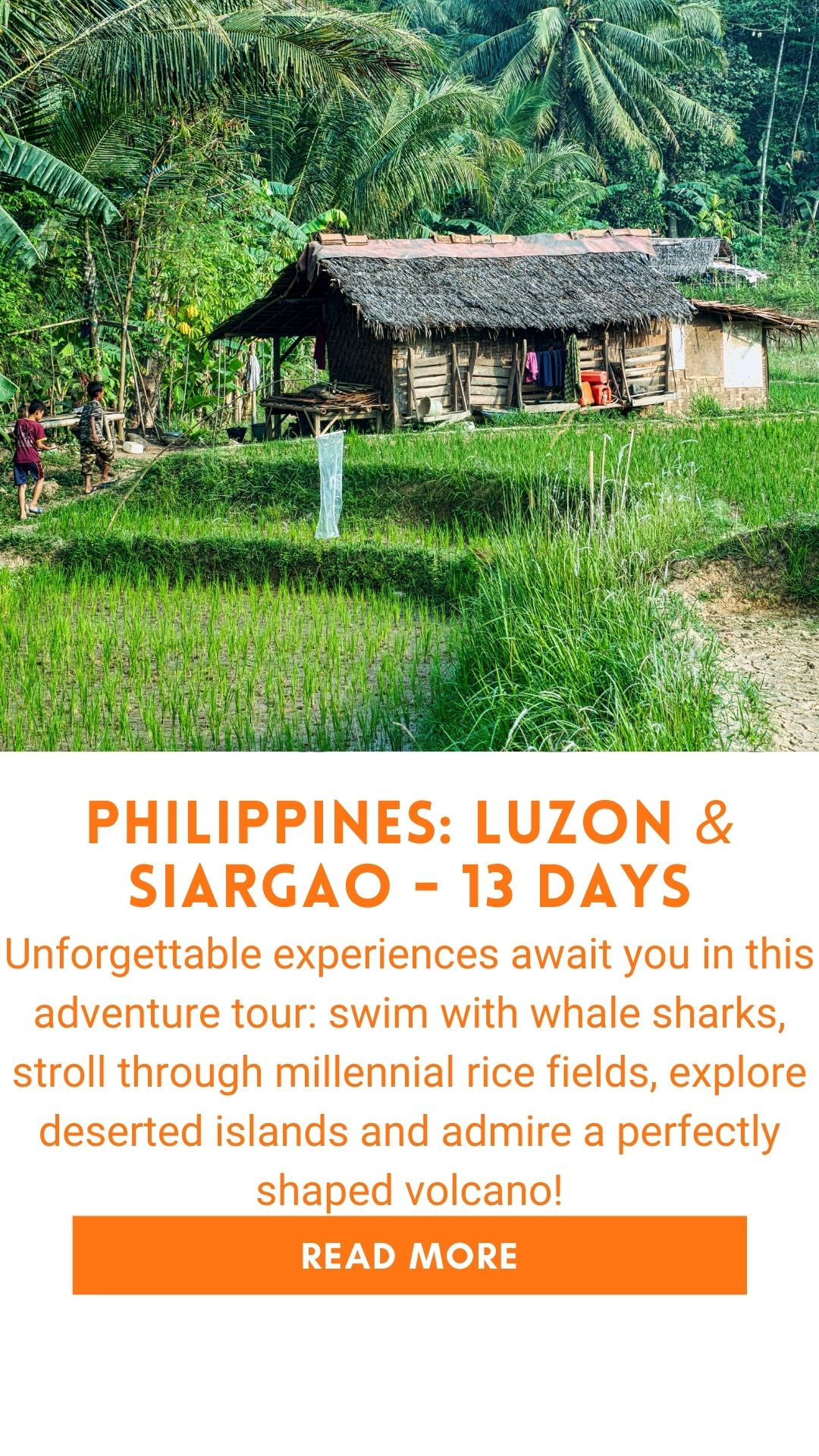 Organized trip in the Philippines