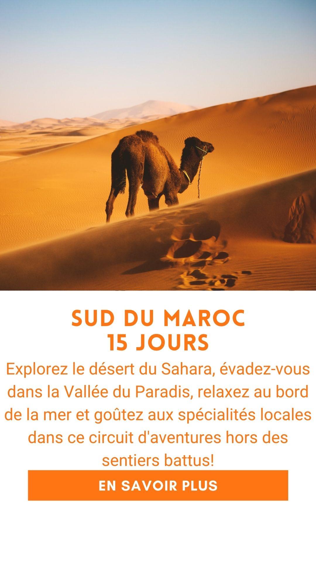 Voyage organisé au Maroc