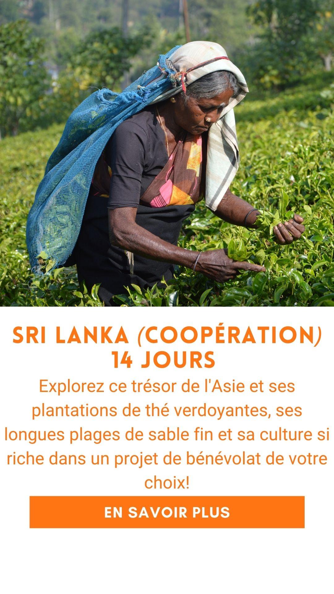 Voyage organisé au Sri Lanka (voyage humanitaire)