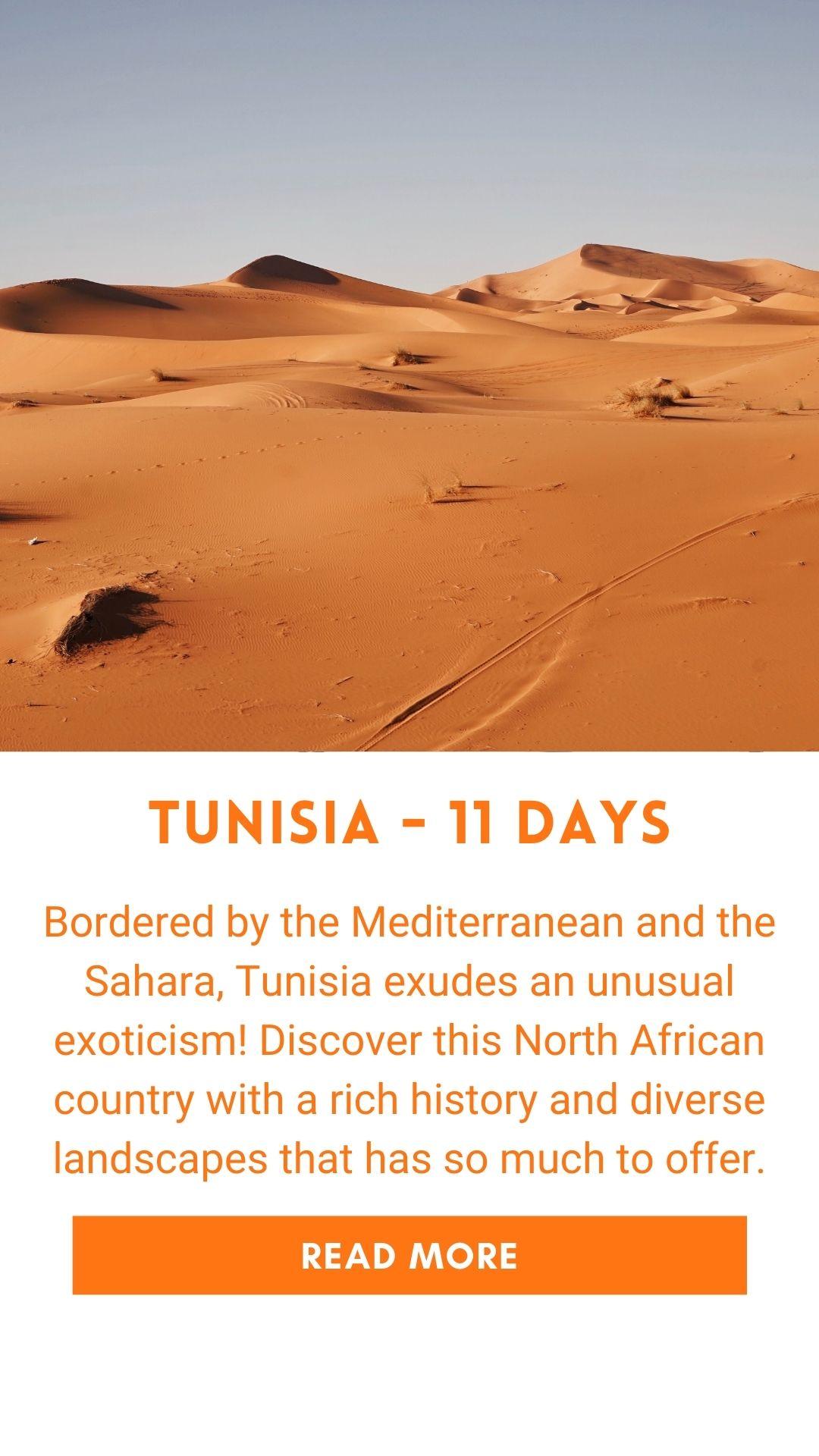 Organized trip in Tunisia