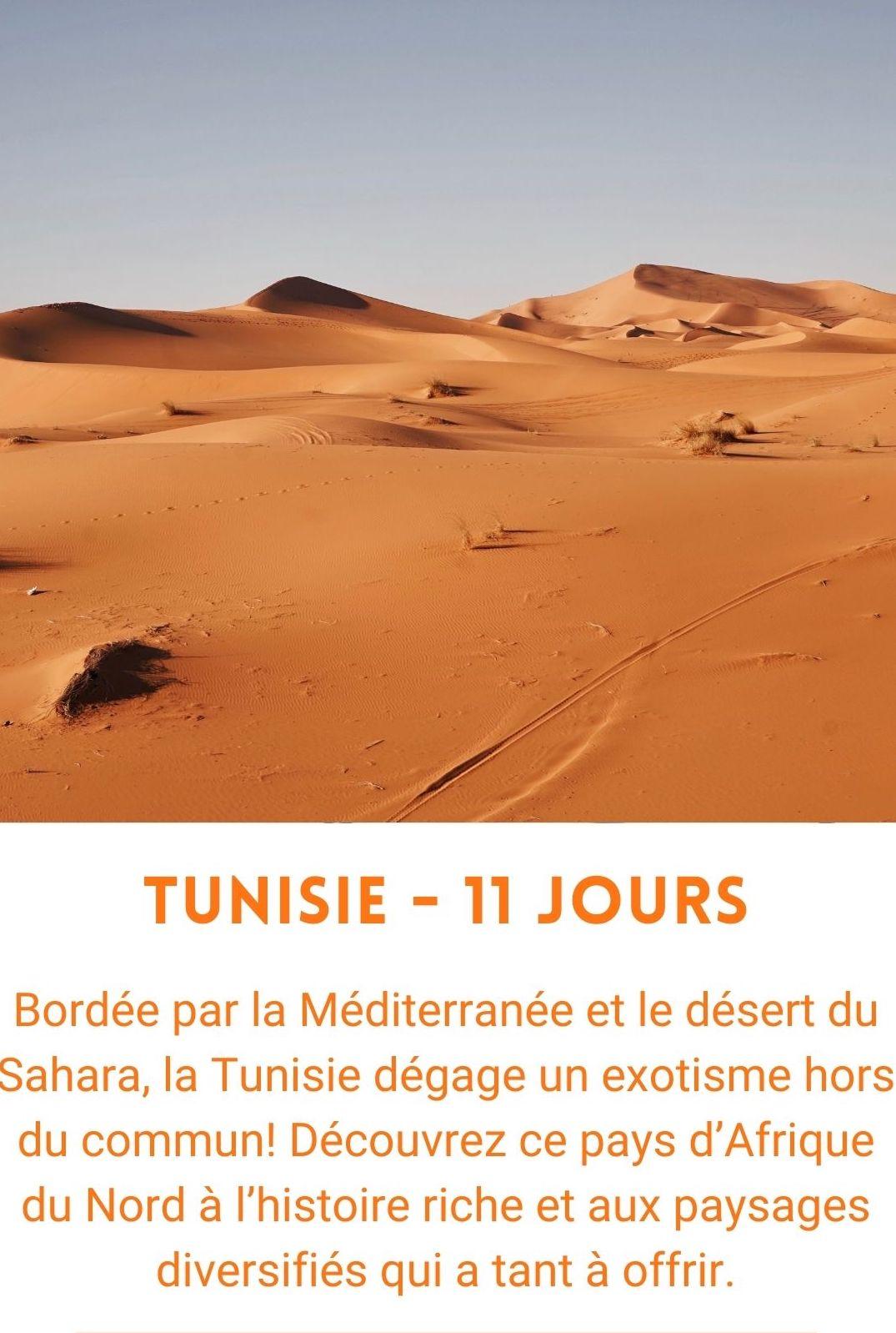 Voyage organisé en Tunisie