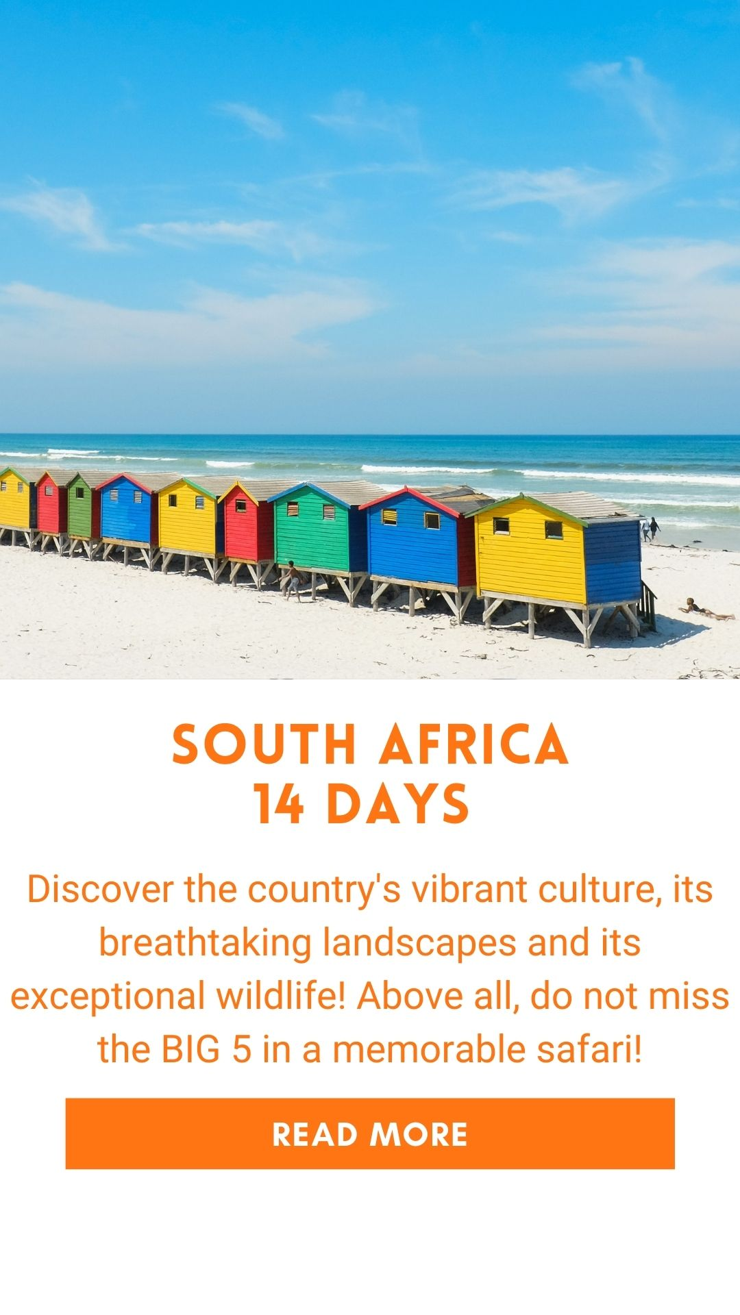 Organized trip in South Africa